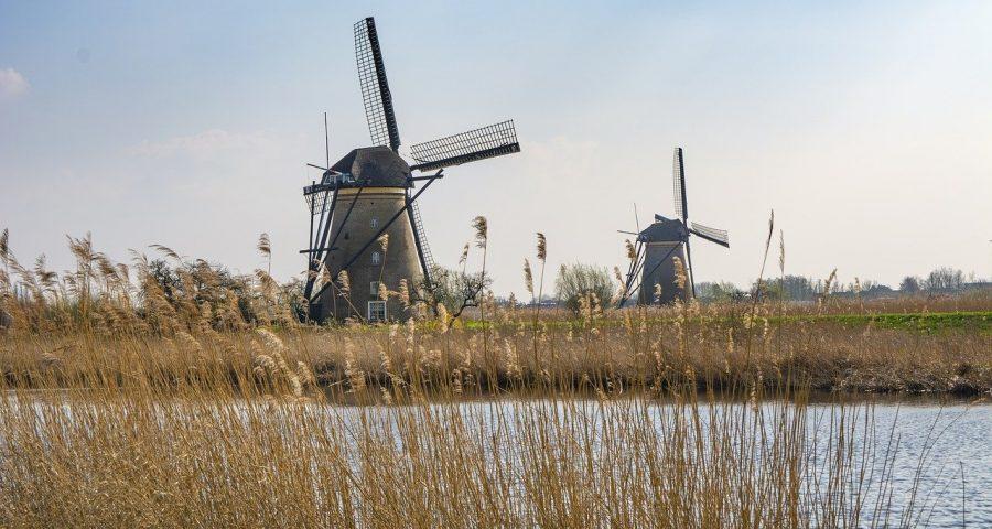 foto van windmolens